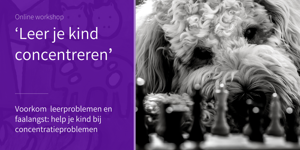 Online zelfstudie-workshop Leer je kind concentreren